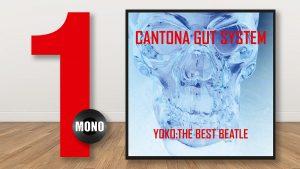 Mono Magasin utser Yoko The Best Beatle till 2020 års bästa skiva